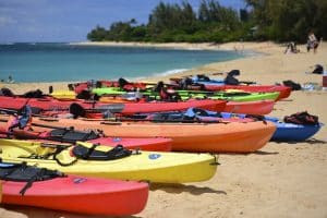 Best excursions and tours in Hawaii