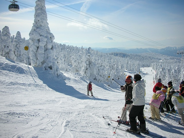 Japan Best time to Travel - ski