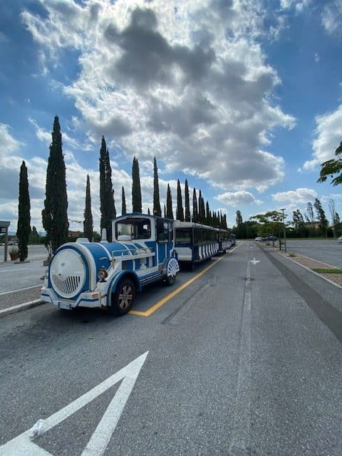 Abandoned Tourist trains in Pisa