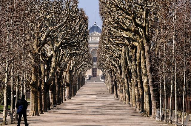 Jardin des Plantes – Paris