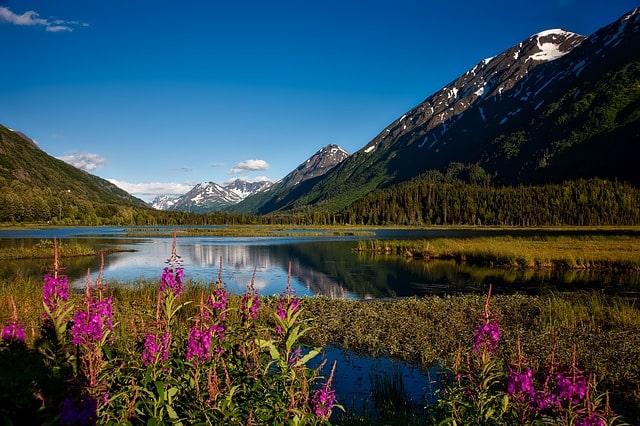 Alaska Travel Guides & Travel Books